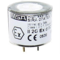 Replacement Sensor, CO, H2S
