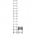 Professional Extension Ladder (18 feet)